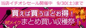 秋メイクおまとめ買い収穫祭!
