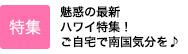 「トレンド探偵Vol.5」日本最速販売!?コスメの最先端を追う! in Hawaii(2019)