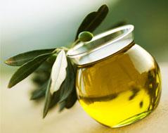 植物の種子から抽出するオイル