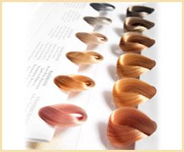 多くの人が、ヘアカラーを楽しむ時代。より個性的に繊細に、様々な美しい色味をヘアカラーで表現できるようになりました。