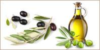 Olive Oil Polyphenols(オリーブオイルポリフェノール)
