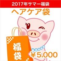 2017★サマー福袋★ヘアケア 五千円