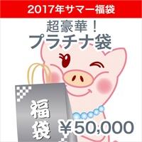 2017★サマー福袋★超豪華!プラチナ袋