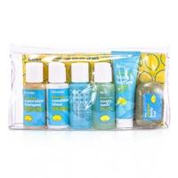 レモン & セージ シングサイドシックスパック: 6pcs+1bag